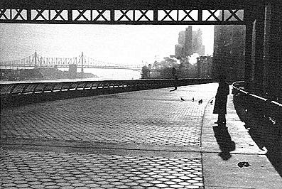 André Kertész, 'New York 1954'